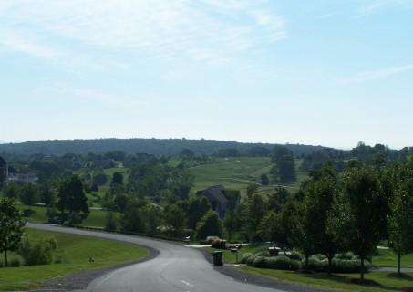 LoCo Neighborhood: Beacon Hill